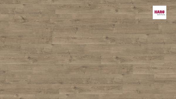 537264 HARO CORKETT Arteo XL 4 V Eiche Portland dunkelgrau strukturiert Ver